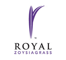 Royal Zoysia Grass