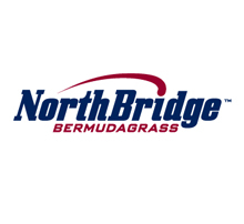 NorthBridge Bermuda Grass